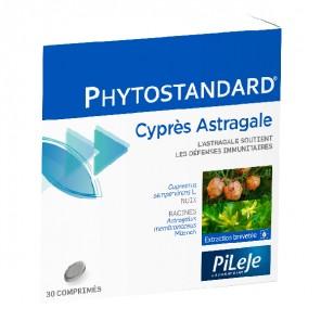 Pilèje phytostandard cyprès/ astragale